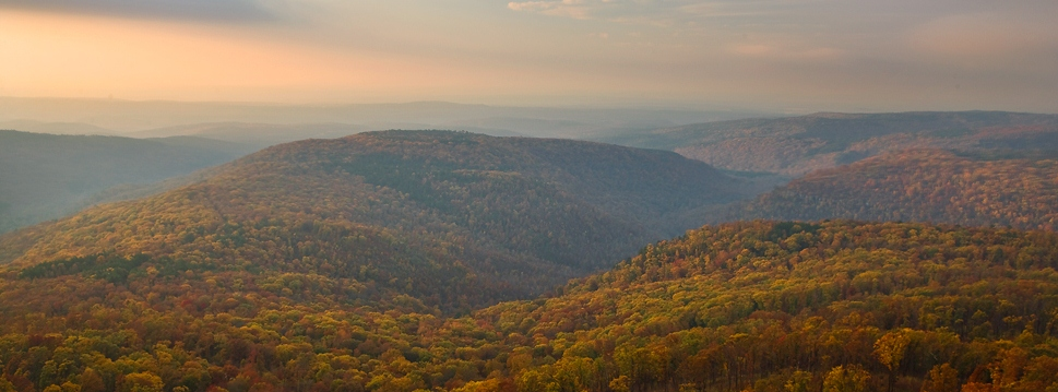 Soft-Autumn-Hills-In-Ozark-Mountains 969x359